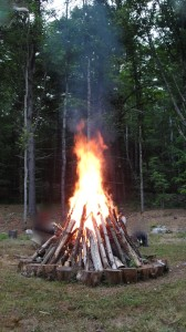 The Self Purifying Fire
